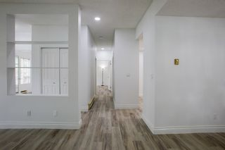 Photo 14: 113 7500 ABERCROMBIE DRIVE in Richmond: Brighouse South Condo for sale : MLS®# R2610665