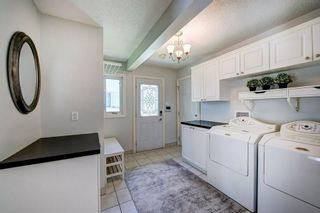 Photo 23: 10907 WILLOWFERN Drive SE in Calgary: Willow Park Detached for sale : MLS®# C4304944