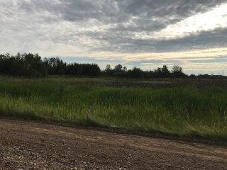 Photo 1: RR 225 Twp 610: Rural Thorhild County Rural Land/Vacant Lot for sale : MLS®# E4225660