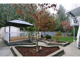 Photo 10: 22550 KENDRICK Loop in Maple Ridge: East Central House for sale : MLS®# V980344