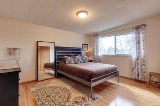 Photo 12: 3768 36 Avenue SW in Calgary: Rutland Park Semi Detached for sale : MLS®# A1148996
