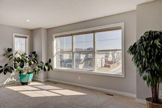 Photo 26: 205 CHAPALINA Mews SE in Calgary: Chaparral Detached for sale : MLS®# C4241591