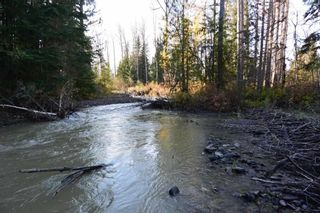 """Photo 16: 161 HELEN LAKE Road: Hazelton Land for sale in """"KISPIOX VALLEY"""" (Smithers And Area (Zone 54))  : MLS®# R2355392"""