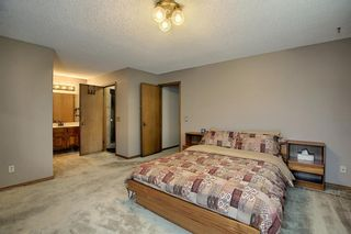 Photo 19: 172 Edendale Way NW in Calgary: Edgemont Detached for sale : MLS®# A1133694