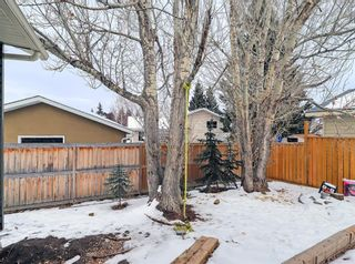 Photo 37: 16 Wood Crest Close SW in Calgary: Woodlands Detached for sale : MLS®# A1072752