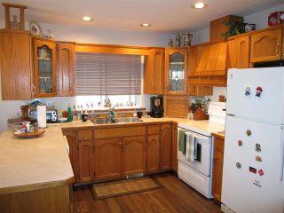 Photo 5: 23647 TAMARACK Lane in Maple Ridge: Albion House for sale : MLS®# R2019626
