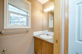Photo 22: 172 ERIN MEADOW Way SE in Calgary: Erin Woods Detached for sale : MLS®# A1028932
