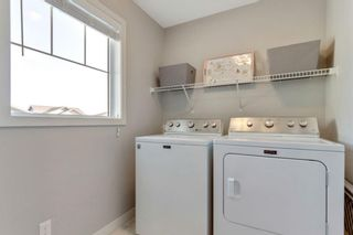 Photo 38: 290 Hillcrest Heights SW: Airdrie Detached for sale : MLS®# A1039457