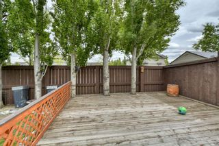 Photo 45: 143 Chapman Way SE in Calgary: Chaparral Detached for sale : MLS®# A1116023