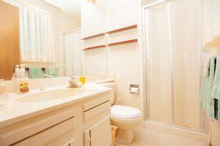 Photo 30: 4111 107A Street in Edmonton: Zone 16 House for sale : MLS®# E4249921