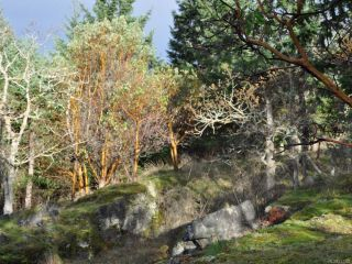 Photo 10: LOT 15 HUNTINGTON PLACE in NANOOSE BAY: PQ Fairwinds Land for sale (Parksville/Qualicum)  : MLS®# 717528