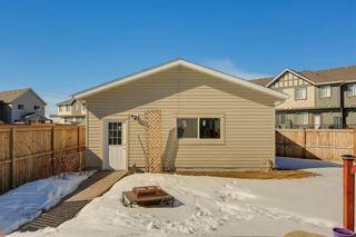 Photo 42: 64 NEW BRIGHTON Grove SE in Calgary: New Brighton Detached for sale : MLS®# C4233514