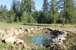 Photo 41: 3306 MACAULAY Rd in : CV Merville Black Creek House for sale (Comox Valley)  : MLS®# 851634