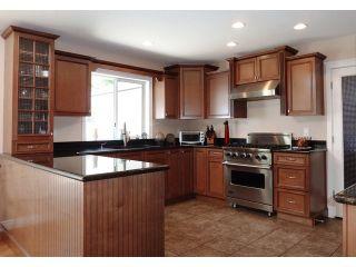 Photo 7: 27049 18 AV in Langley: Otter District House for sale : MLS®# F1445983