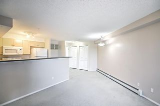 Photo 19: 1216 2395 Eversyde in Calgary: Evergreen Apartment for sale : MLS®# A1125880