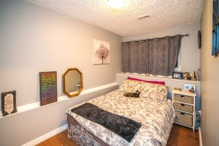 Photo 19: 3920 COAST MERIDIAN Road in Port Coquitlam: Oxford Heights House for sale : MLS®# R2349523