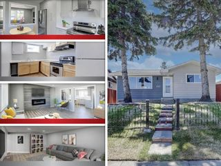 Main Photo: 192 Dovercliffe Way SE in Calgary: Dover Detached for sale : MLS®# A1122814