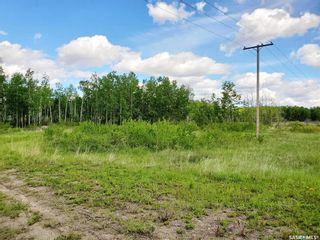 Photo 4: 138 Acres, RM of Meadow Lake #588 in Meadow Lake: Lot/Land for sale (Meadow Lake Rm No.588)  : MLS®# SK860207