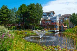 """Photo 17: 218 5500 ANDREWS Road in Richmond: Steveston South Condo for sale in """"SOUTHWATER"""" : MLS®# R2292523"""