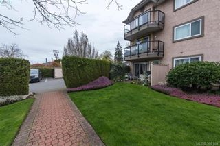 Photo 16: 101 7070 West Saanich Rd in BRENTWOOD BAY: CS Brentwood Bay Condo for sale (Central Saanich)  : MLS®# 784095