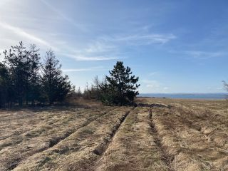 Photo 5: 92-1 Malagash Road in Malagash Point: 102N-North Of Hwy 104 Vacant Land for sale (Northern Region)  : MLS®# 202108290