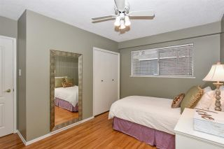 Photo 24: 8335 NELSON Avenue in Burnaby: South Slope House for sale (Burnaby South)  : MLS®# R2550990