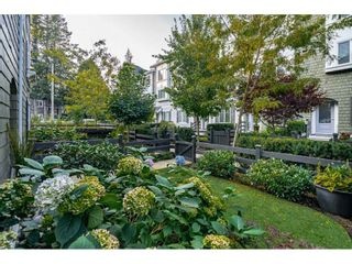 """Photo 32: 67 288 171 Street in Surrey: Pacific Douglas Townhouse for sale in """"THE CROSSING"""" (South Surrey White Rock)  : MLS®# R2547062"""