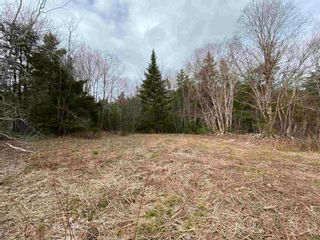 Photo 16: Sherbrooke Road in Greenvale: 108-Rural Pictou County Vacant Land for sale (Northern Region)  : MLS®# 202111683