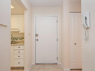 Photo 17: 303 1021 Collinson St in : Vi Fairfield West Condo for sale (Victoria)  : MLS®# 853542
