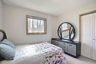 Photo 42: 211 Hampstead Circle NW in Calgary: Hamptons Detached for sale : MLS®# A1114233