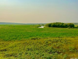 Photo 28: Unvoas Farm in Swift Current: Farm for sale (Swift Current Rm No. 137)  : MLS®# SK864766