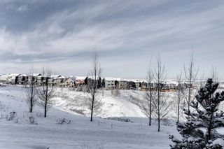 Photo 29: 502 428 Nolan Hill Drive NW in Calgary: Nolan Hill Row/Townhouse for sale : MLS®# A1064360