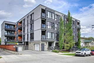 Photo 36: 304 414 MEREDITH Road NE in Calgary: Crescent Heights Apartment for sale : MLS®# A1119417