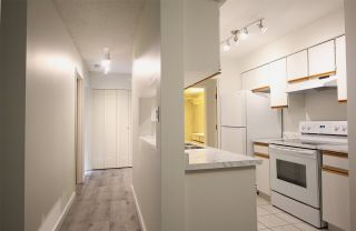 Photo 2: 112 4363 HALIFAX STREET in Burnaby: Brentwood Park Condo for sale (Burnaby North)  : MLS®# R2480703