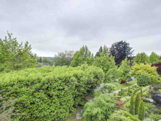 """Photo 3: 4490 PINE Crescent in Vancouver: Shaughnessy House for sale in """"Shaughnessy"""" (Vancouver West)  : MLS®# R2183712"""