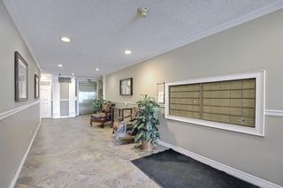 Photo 38: 303 495 78 Avenue SW in Calgary: Kingsland Apartment for sale : MLS®# A1120349