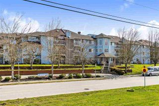Photo 1: 209 11510 225 Street in Maple Ridge: East Central Condo for sale : MLS®# R2446932