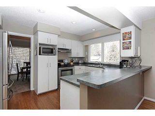 Photo 5: 12238 LAKE ERIE Road SE in CALGARY: Lk Bonavista Estates Residential Detached Single Family for sale (Calgary)  : MLS®# C3607562