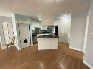 "Photo 4: 210 40120 WILLOW Crescent in Squamish: Garibaldi Estates Condo for sale in ""Diamondhead"" : MLS®# R2522991"
