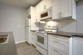 Photo 9: 3210 30A Avenue SE in Calgary: Dover Semi Detached for sale : MLS®# A1055012