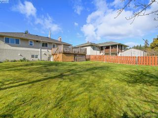 Photo 24: 4145 Birtles Ave in VICTORIA: SW Glanford House for sale (Saanich West)  : MLS®# 835004