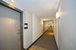 Photo 24: 333 12339 STEVESTON Highway in Richmond: Ironwood Condo for sale : MLS®# R2623959
