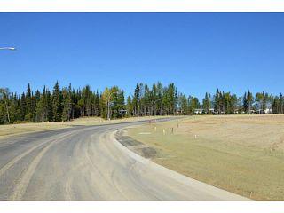 """Photo 4: LOT 16 BELL Place in Mackenzie: Mackenzie -Town Land for sale in """"BELL PLACE"""" (Mackenzie (Zone 69))  : MLS®# N227309"""