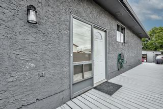 Photo 37: 5 Templeton Bay NE in Calgary: Temple Semi Detached for sale : MLS®# A1113362