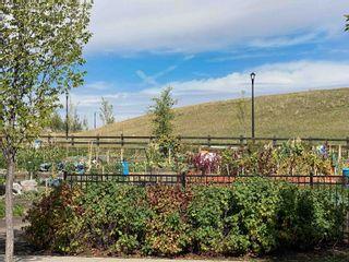 Photo 49: 1062 GAULT Boulevard in Edmonton: Zone 27 Townhouse for sale : MLS®# E4261913
