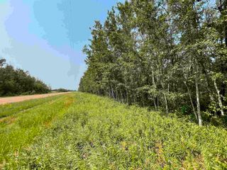 Photo 9: RGE RD 223 Twp Rd 594: Rural Thorhild County Rural Land/Vacant Lot for sale : MLS®# E4256609