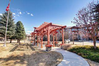 Photo 48: 1410 LAKE FRASER Green SE in Calgary: Lake Bonavista Apartment for sale : MLS®# C4294063