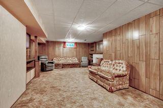 Photo 22: 7827 7 Street SW in Calgary: Kingsland Detached for sale : MLS®# A1030165