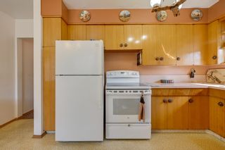 Photo 8: 3617 113 Avenue in Edmonton: Zone 23 House for sale : MLS®# E4261737