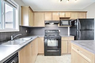 Photo 17: 159 Copperstone Grove SE in Calgary: Copperfield Detached for sale : MLS®# A1138819